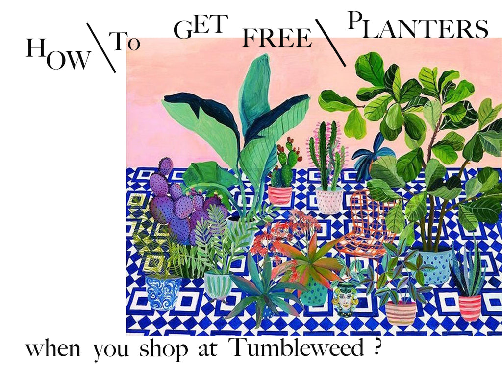HOW TO GET FREE PLANTERS WHEN YOU SHOP AT TUMBLEWEED?