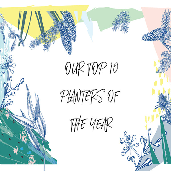 OUR TOP 10 PLANTERS OF THE YEAR