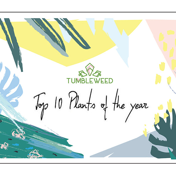 Our top 10 plants of the year