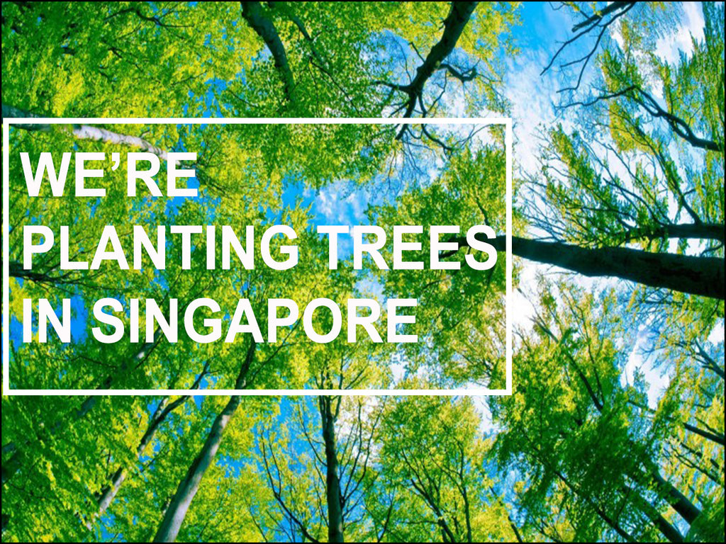 WE'RE PLANTING TREES IN SINGAPORE