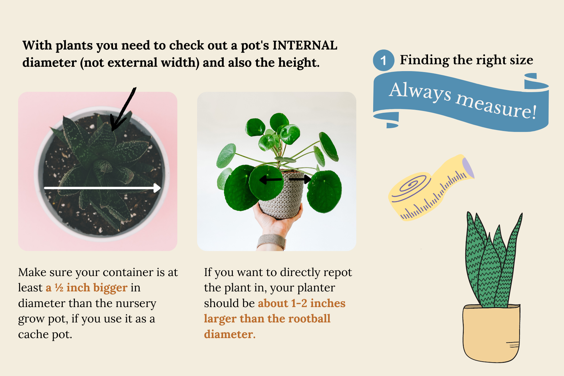 how to find the right planter for your houseplants-2