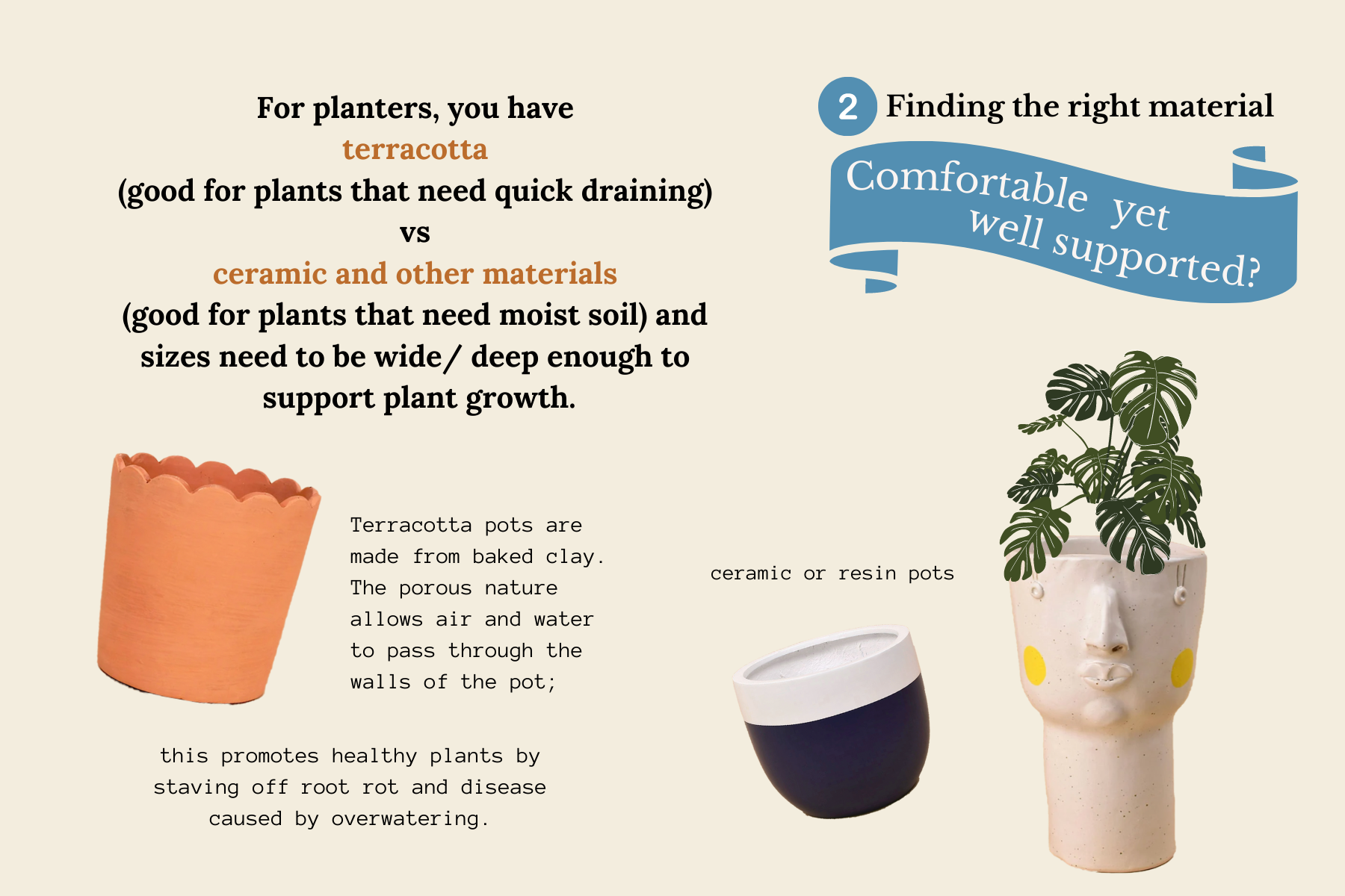 how to find the right planter for your houseplants-5.png