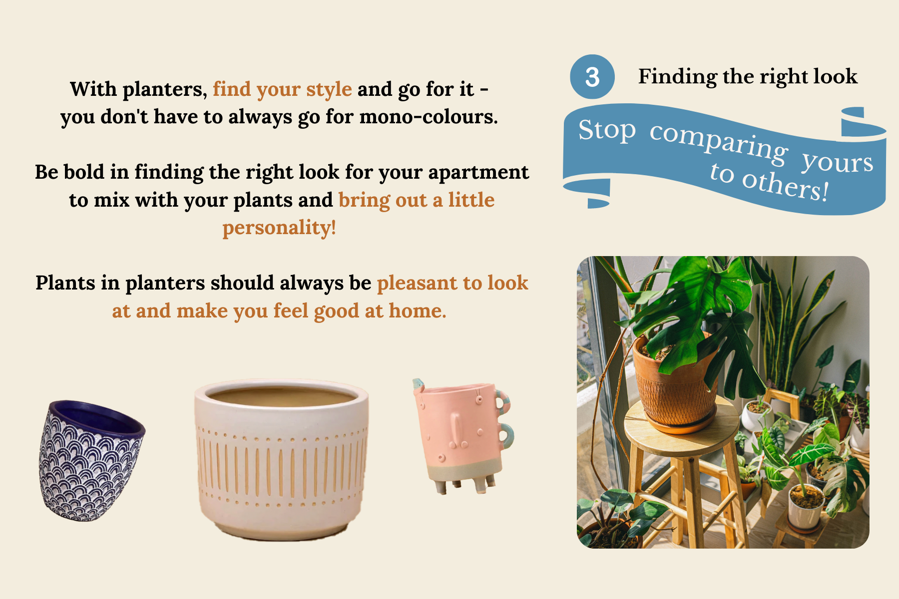 how to find the right planter for your houseplants-7.png