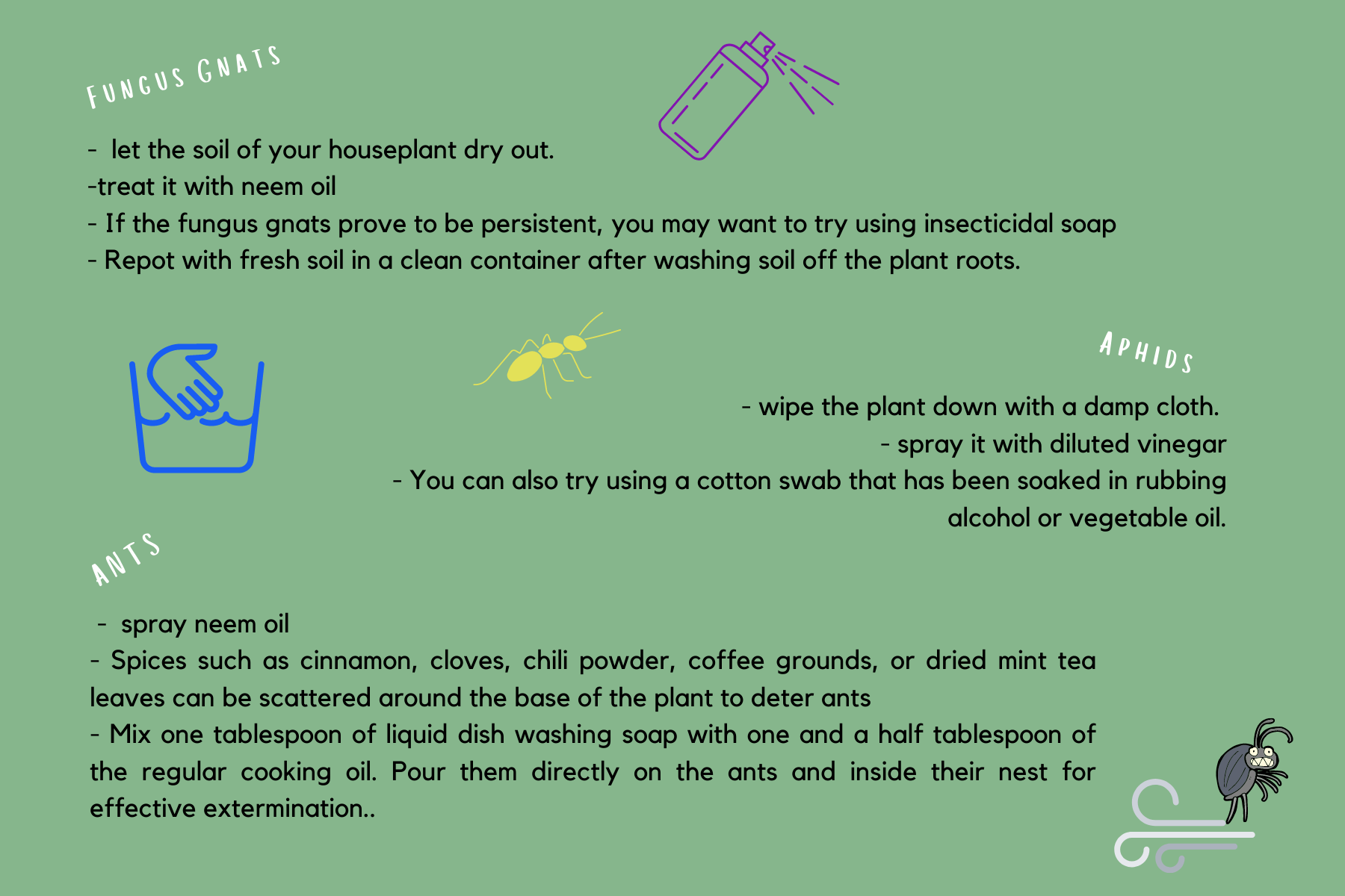 how to get rid of ants on indoor plants