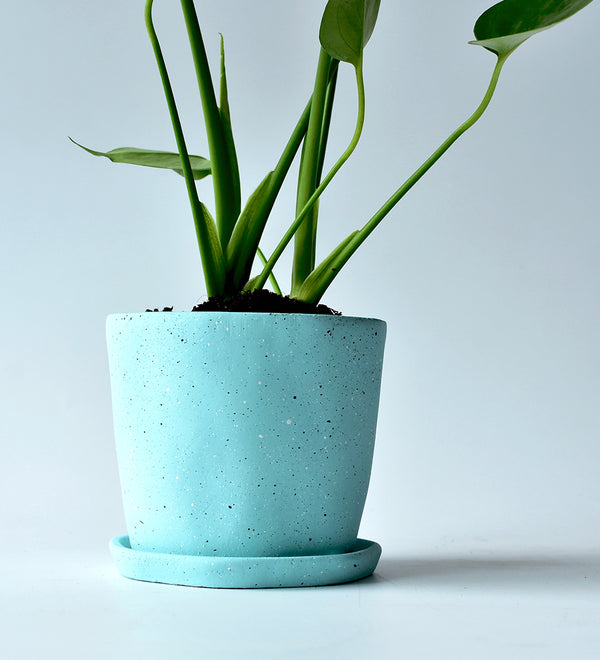 Aquamarine planter