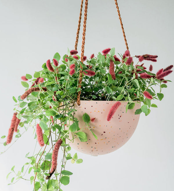 Capra Designs' Hanging Dome Planter