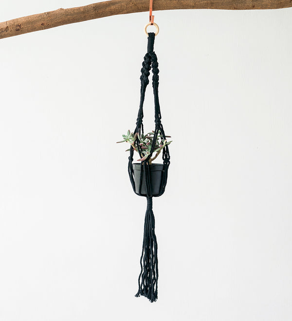 Black Macrame Plant Hanger with copper hook holding succulent plant