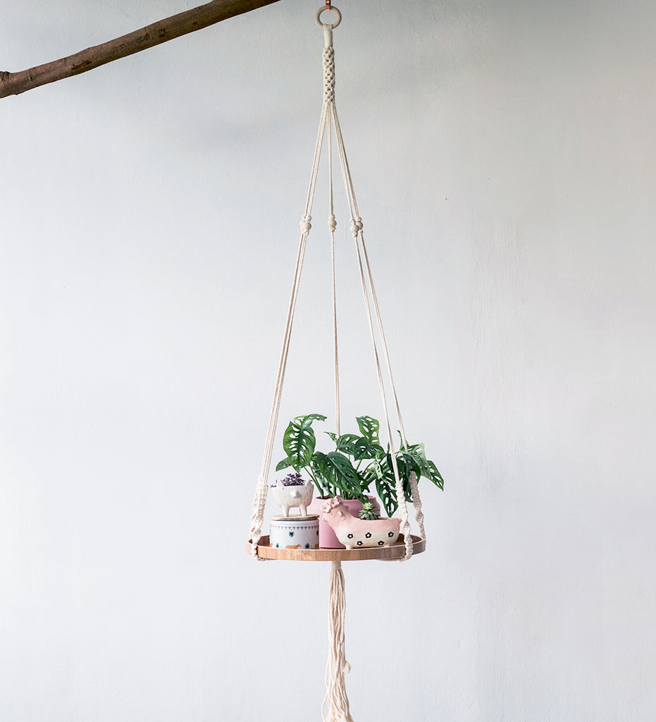 Floating shelf on macrame hanger with collection of plants suspended from branch