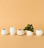 Geometric White Ceramic Pots