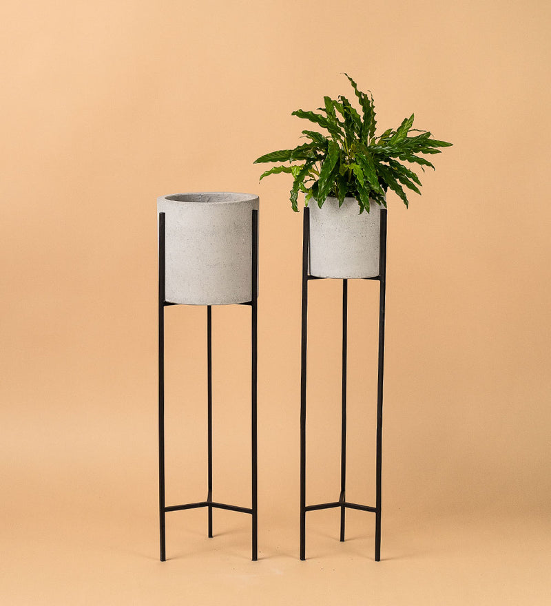Tall Cement Stands