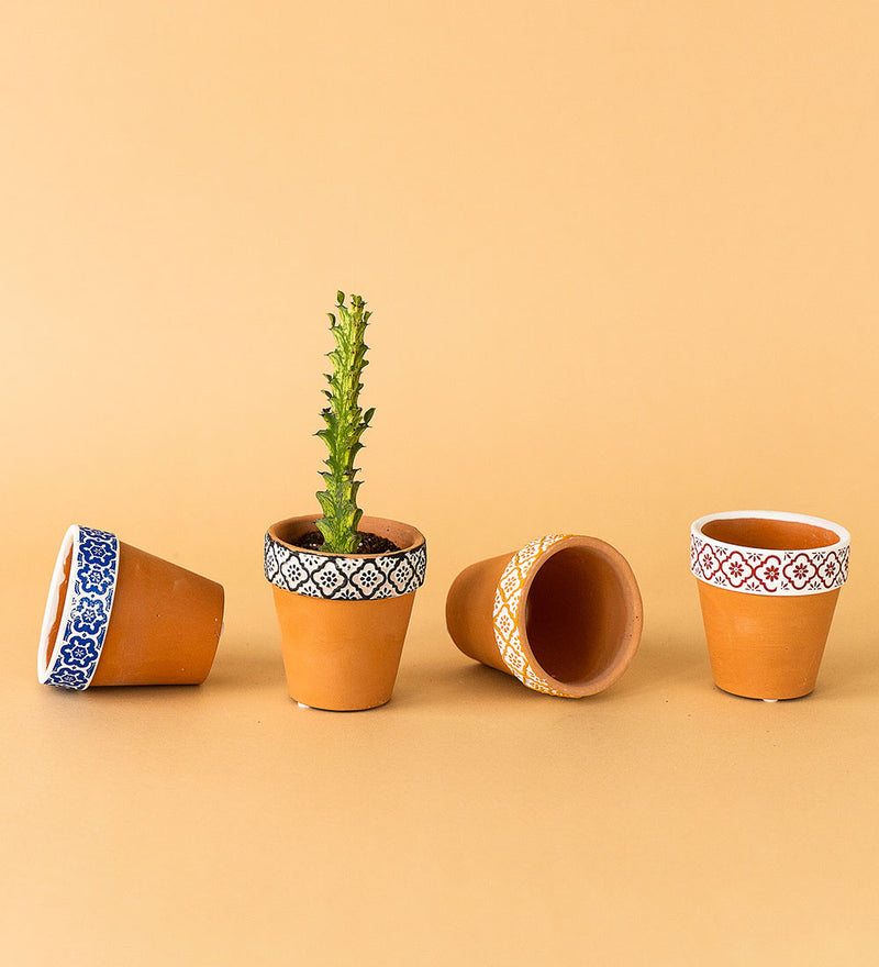 Terracotta Mini Pots