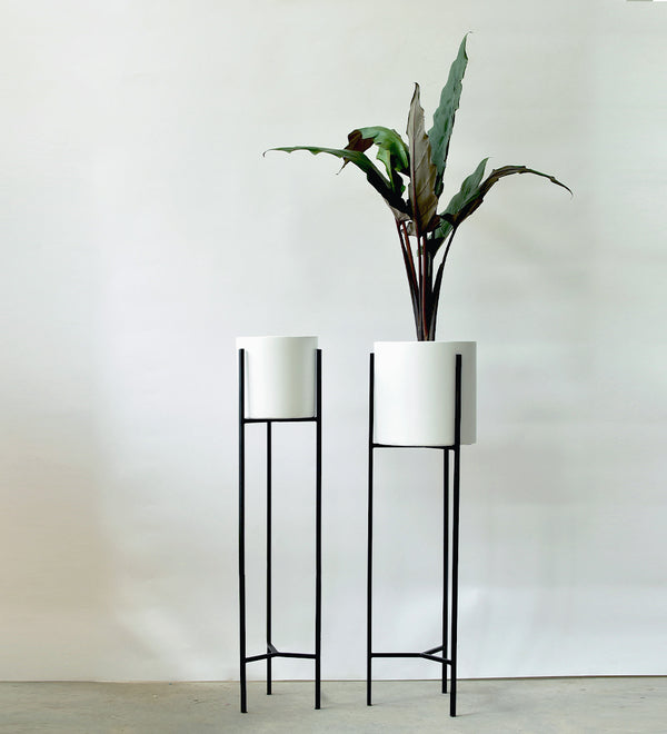 Tall Plant Stands