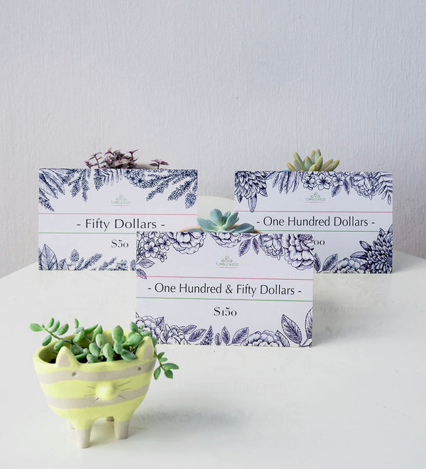 Tumbleweed Plants Gift vouchers cute design