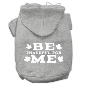 Be Thankful For Me Screen Print Pet Hoodies Grey Size L (14)