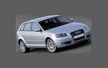 Audi A3 / S3 (Type 8P Pre-Facelift) 2003-2008 Headlights CLEAR Stone Protection