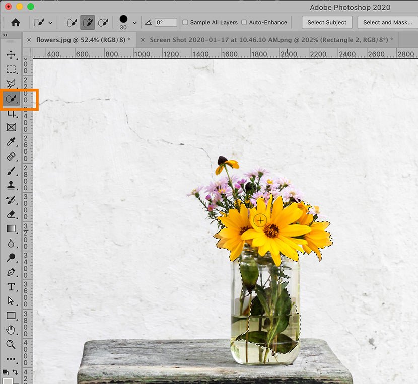 Photoshop CC 2020 quick selection tool