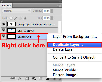 Duplicate the layer by right clicking on the desired layer
