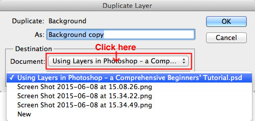 Duplicate the layer and choose destination