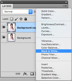 Make a new black and white photo by clicking on lower portion of layer panel