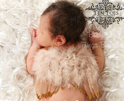 Gold Kisses Newborn Fairy Wings 4 Colors