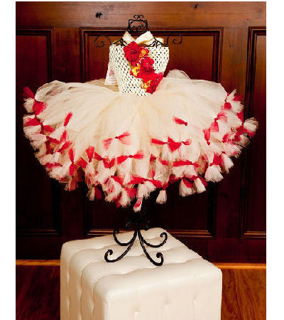 Heirloom Velvet Holiday Tutu Dress