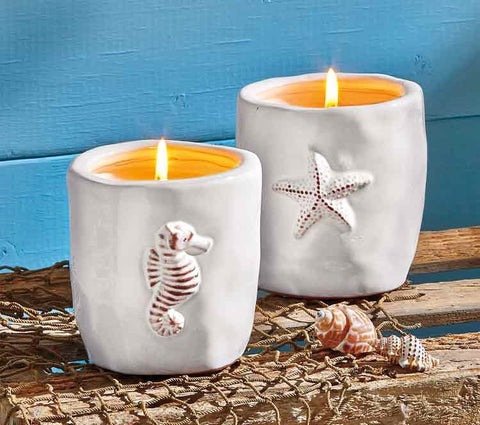 Candle- Star Fish Citronella Candle