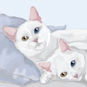 Double Pet Portraits
