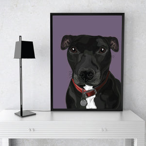 Single Pet Portrait