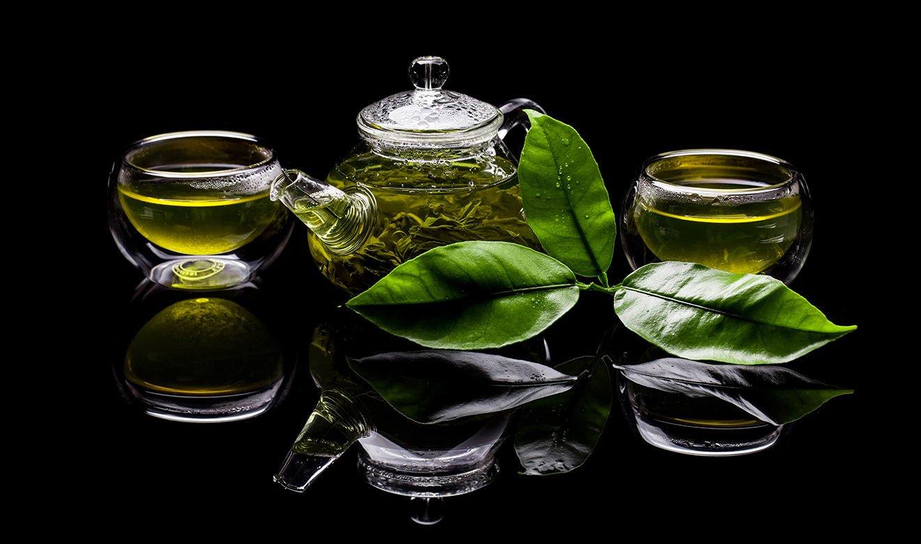 Dive Into the Largest Collection of Herbs and Herbal Teas