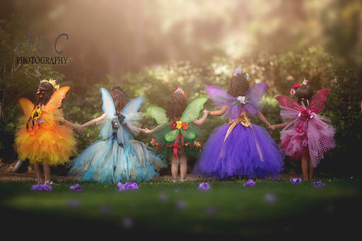 Fairy Time Collection
