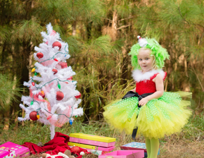 Grinch Inspired Girls Tutu Dress Costume