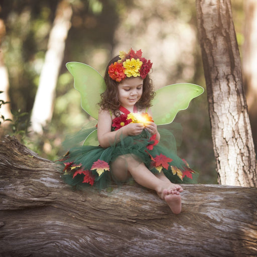 Fall Fairy Tutu Dress Costume