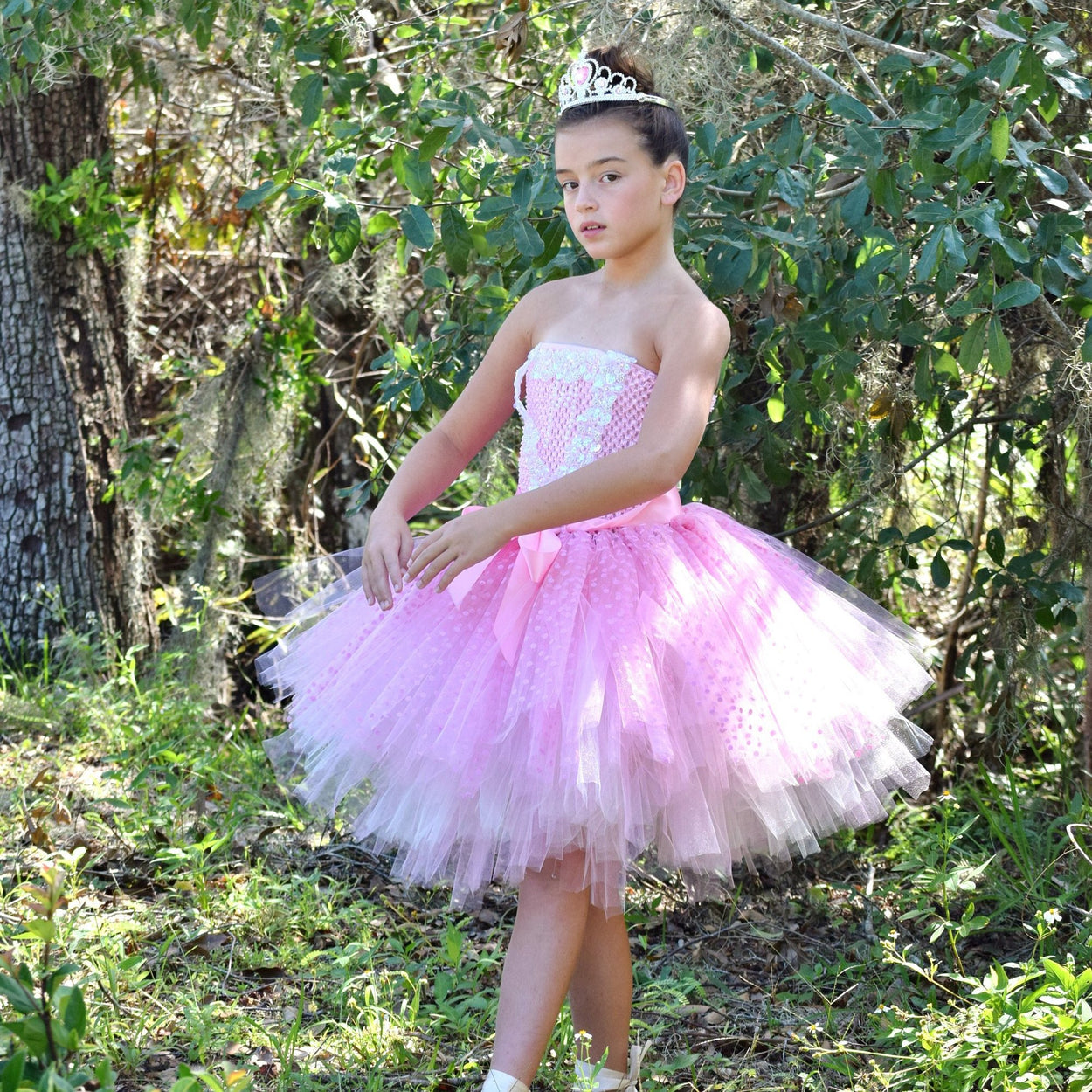 Nutcracker Sugar Plum Fairy Inspired Tutu Ballet Costume
