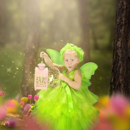 Tinkerbell Inspired Fairy Tutu Dress Costume