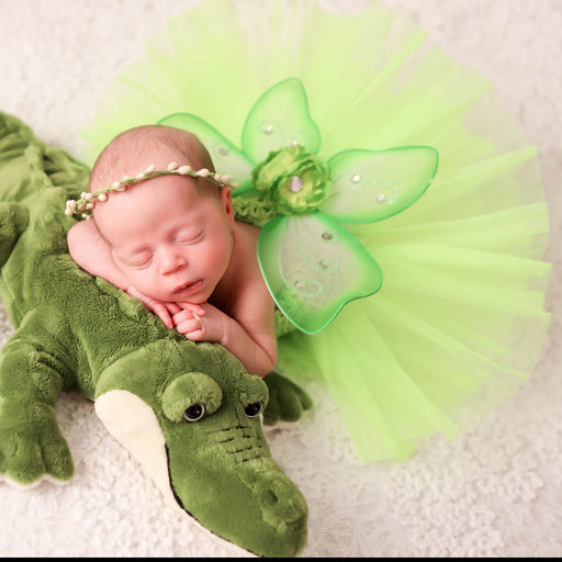 Tinkerbell Inspired Newborn Princess Outfit