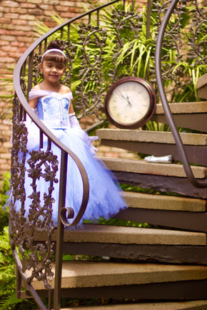 Cinderella Inspired Princess Dress