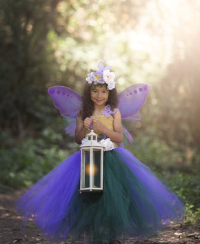 The Queen of The Fairies Tutu Dress Costume