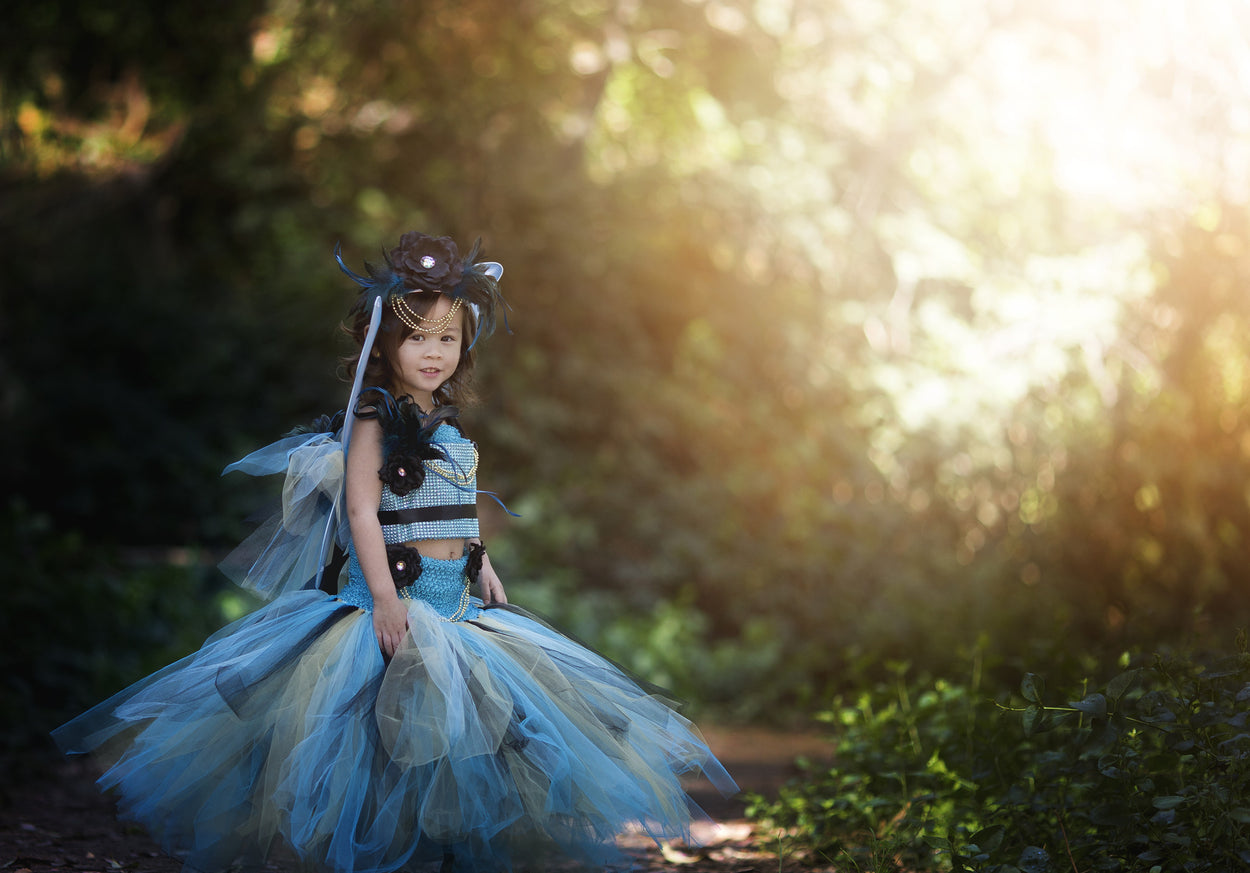 The Glitz and Glamour Fairy Tutu Dress