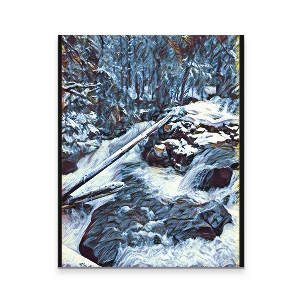 Rogue Gorge Power 16x20 Canvas Print