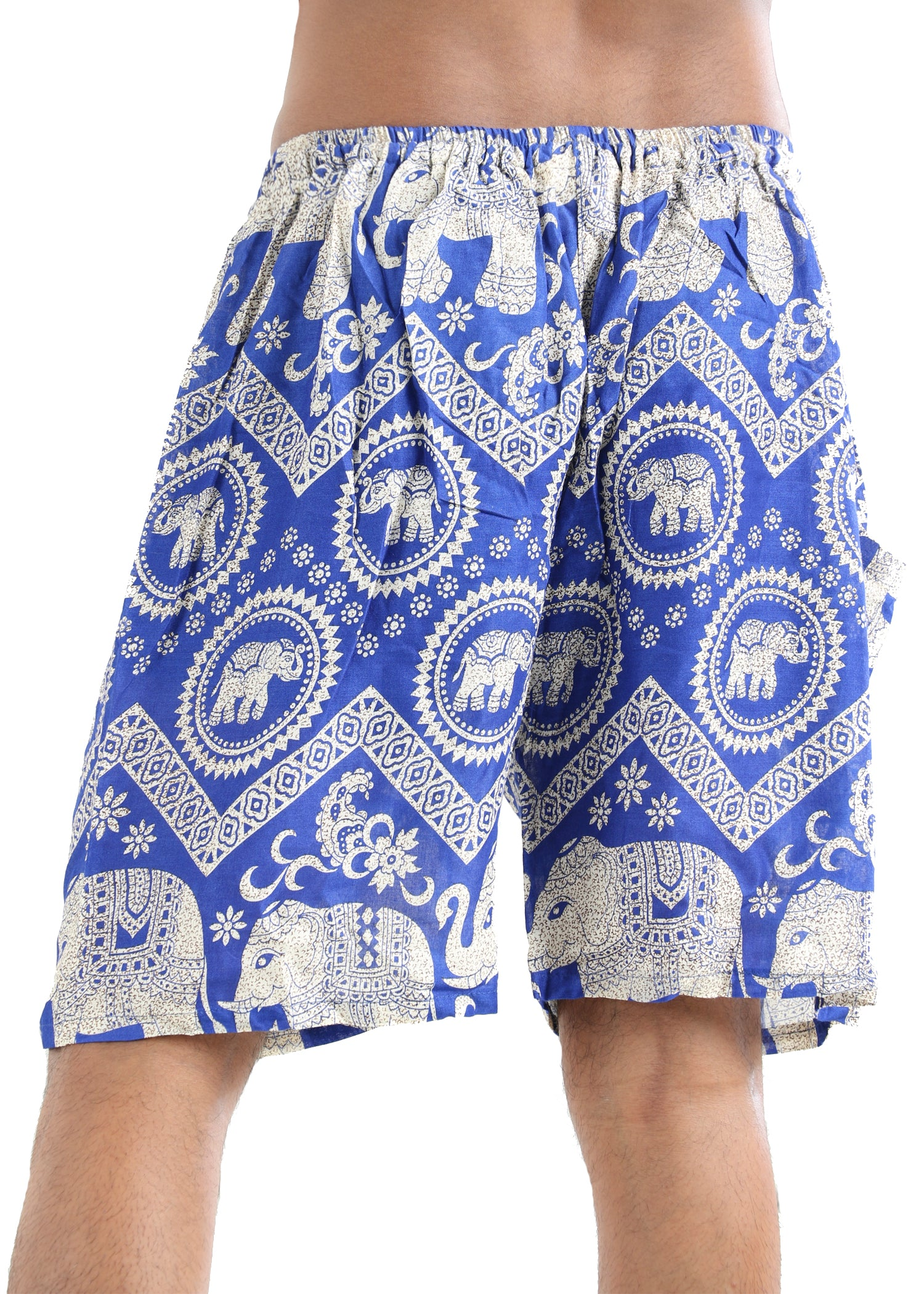 Tusk (Blue) - Buy Harem Pant / Hippie Pants / Boho Pants / online by The Veshti Company