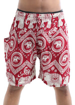 Tusk (Red) - Buy Harem Pant / Hippie Pants / Boho Pants / online by The Veshti Company