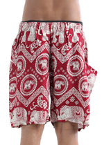 Tusk (Red) - Buy Harem Pant / Dhoti / Veshti / Mundu online by The Veshti Company