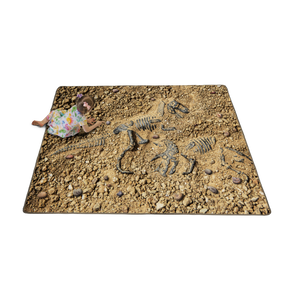 Fossil Finder Carpet