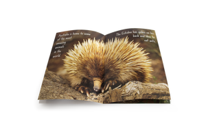 Let's Learn about Australian Animals Big Book