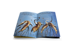 Birds around the Billabong Big Book