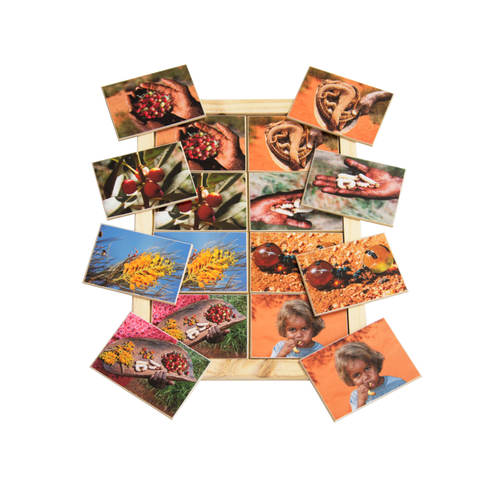 Bush Tucker Memory Game