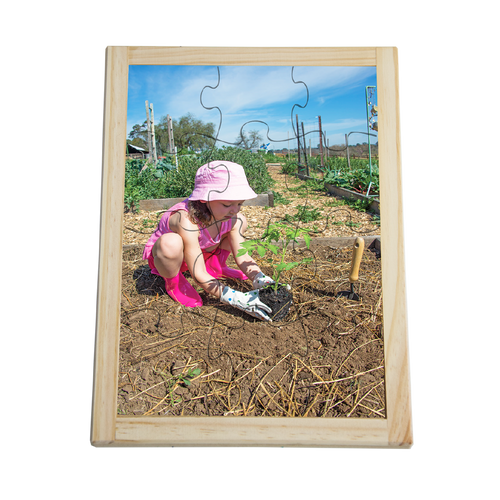 Planting Seedling Puzzle