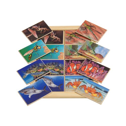 Insect and Sea Creatures Memory Game