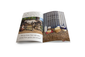 Set of 4 Big Books - With FREE 'Farm' Poster Pack