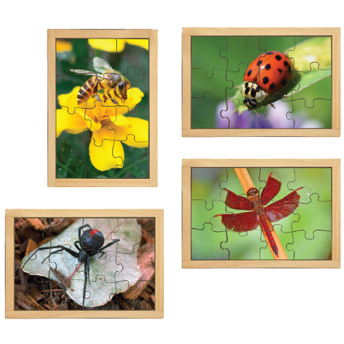 Garden Bugs Puzzles with FREE Posters
